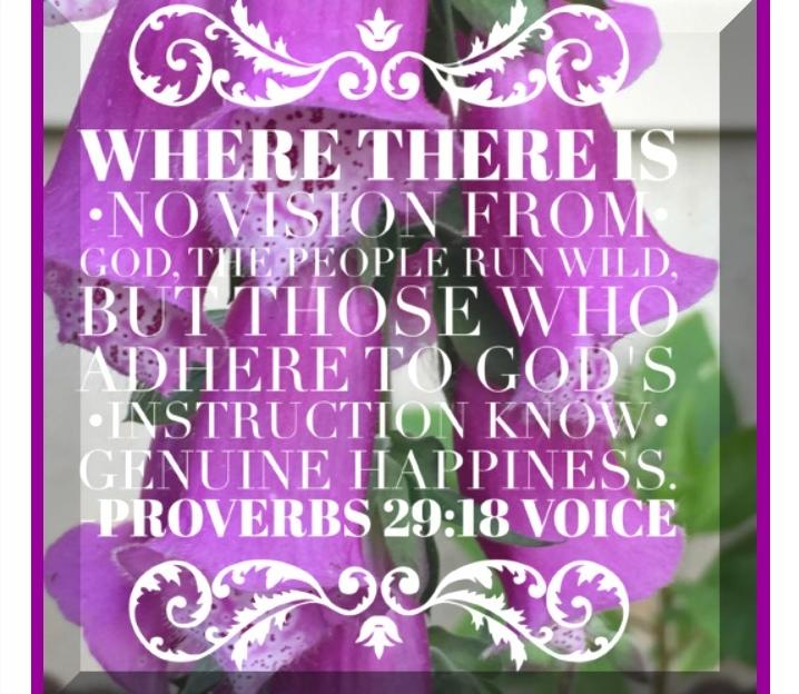 Prov 29 18